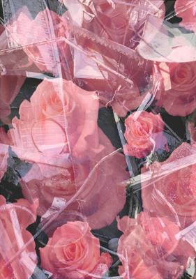 16_2002_Urs_Luthi_Trash_e_Roses