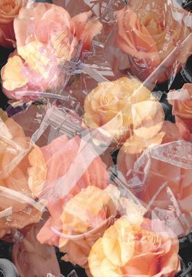 18_2002_Urs_Luthi_Trash_e_Roses