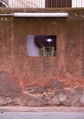01_2012_Christoph_Meier_greenpisellivideosculpture
