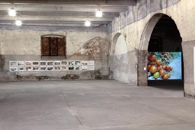 07_2016_Idigenation_Fondazione_Brodbeck