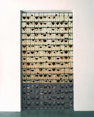 1_1998-filippo-leonardi